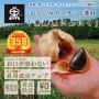 tokubara100_sp01